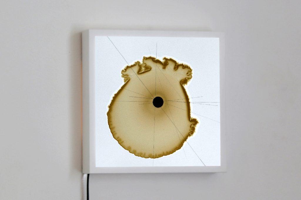 James Geurts, Trajectories II: Prebiotica, 2019. 20 x 20 x 4cm. Edition of 1, series of 10, Light box