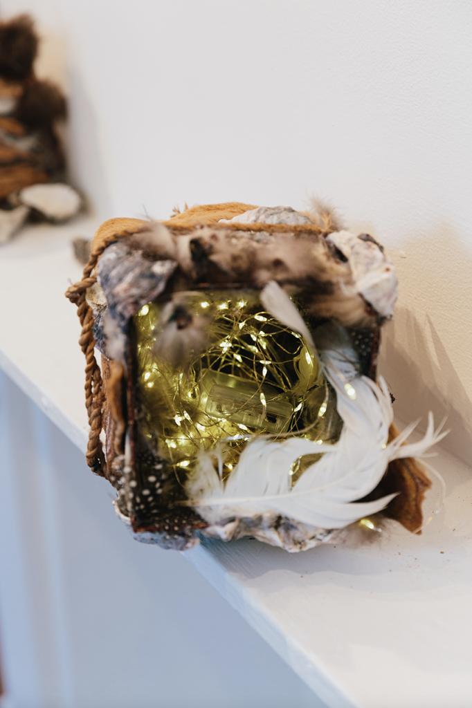 Dr Sarah Jane Moore, 2019, Accelerator Gallery