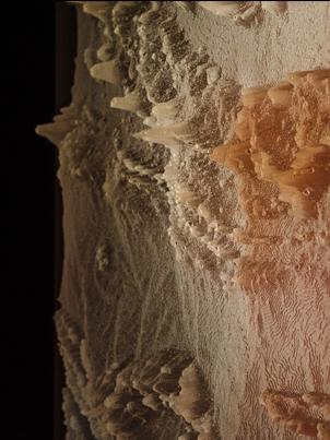 Brad Darkson, Palm Valley, 2015, multimedia installation, resin, acrylic, light box, sound duration 5:09sec.